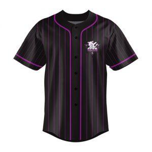 CCSS baseball jersey